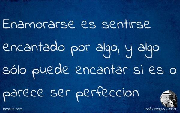 Enamorarse es sentirse encantado por algo, y algo sólo puede encantar si es o parece ser perfeccion