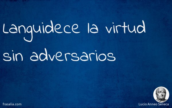 Languidece la virtud sin adversarios