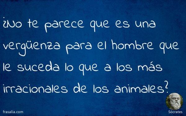 ¿No te parece que es una vergüenza para el hombre que le suceda lo que a los más irracionales de los animales?