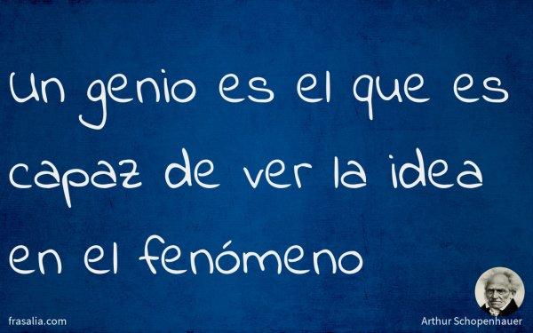 Un genio es el que es capaz de ver la idea en el fenómeno