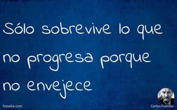 Sólo sobrevive lo que no progresa porque no envejece
