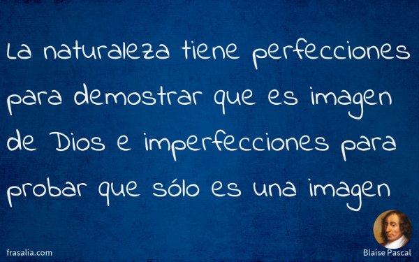 La naturaleza tiene perfecciones para demostrar que es imagen de Dios e imperfecciones para probar que sólo es una imagen